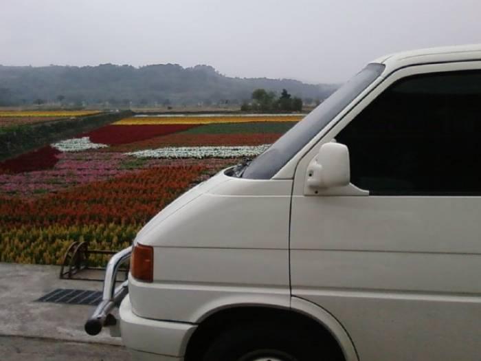 花蓮T4租車旅遊~